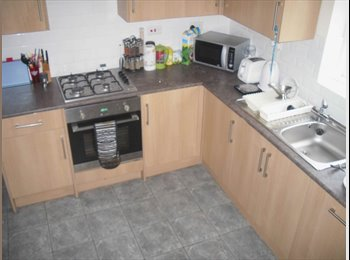 EasyRoommate UK - Large 2 Bed Flat Only 5 Mins from Town & Uni - Mutley, Plymouth - £650 pcm