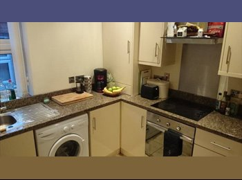 EasyRoommate UK - Roomate wanted for Duplex apartment :) - Stranmillis, Belfast - £250 pcm