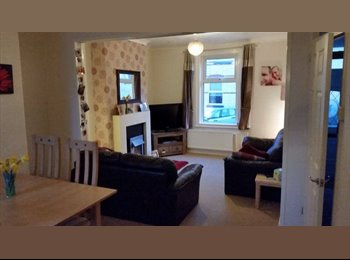 EasyRoommate UK - Room to rent in central location - Newton Abbot, Newton Abbot - £400 pcm