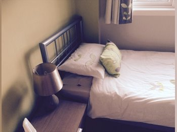 EasyRoommate UK - immaculate single room to rent - Kempshott, Basingstoke and Deane - £400 pcm