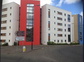EasyRoommate UK - Lovely room in central Dundee student flat - Dundee, Dundee - £350 pcm