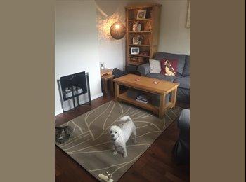EasyRoommate UK - HEATON CHAPEL - DOUBLE BEDROOM TO RENT - Heaton Moor, Stockport - £350 pcm