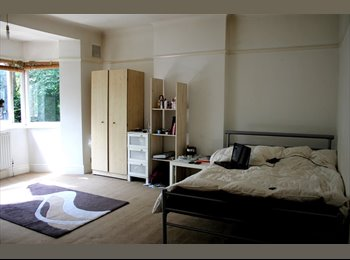 big double room in North London, URGENT