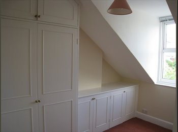 EasyRoommate UK - Bright attic room in friendly shared house, Exeter - £390 pcm