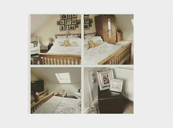 Renovated 4 beds, 3 baths, GREAT location