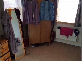 EasyRoommate UK - Housemate wanted for a friendly house! - Cheltenham, Cheltenham - £375 pcm