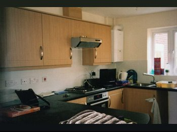 EasyRoommate UK - New tidy, friendly, train, bus and good car access - Countess Wear, Exeter - £375 pcm