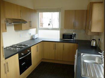 Postgrad share in Central Beeston w/ lg rooms