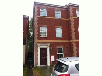 EasyRoommate UK - 2 BEDROOMS AVAILABLE IN A LOVELY TOWNHOUSE - Canton, Cardiff - £300 pcm