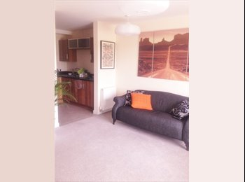 EasyRoommate UK - Double room to rent - Edinburgh Centre, Edinburgh - £550 pcm