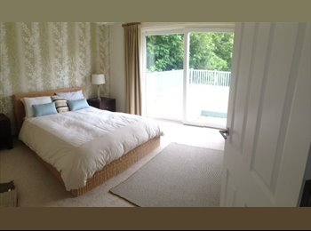 EasyRoommate UK - beautiful room in a beautiful house - Withdean, Brighton and Hove - £700 pcm
