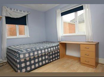 EasyRoommate UK - REASONABLE STUDENT LETS - Cathays, Cardiff - £320 pcm