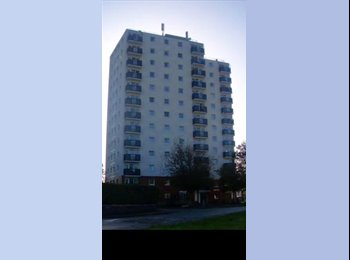 Single Room to let in high rise flats in blacon