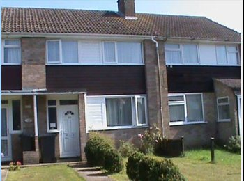 EasyRoommate UK - Student house ideal for UKC students, Hales place - Hales Place, Canterbury - £325 pcm