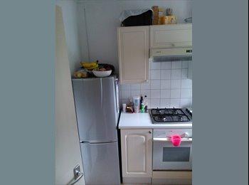 EasyRoommate UK - Lovely room in a 2 bedroom flat - Maidenhead, Maidenhead - £450 pcm