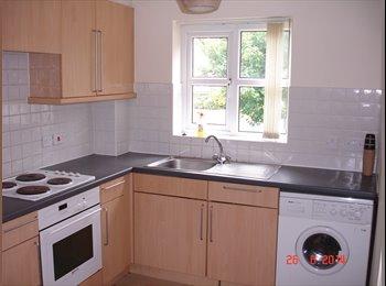EasyRoommate UK - Modern spacious 2 bedroom ground floor apartment - Preston, Preston - £300 pcm