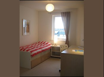 EasyRoommate UK - Room for rent - Old Aberdeen, Aberdeen - £450 pcm