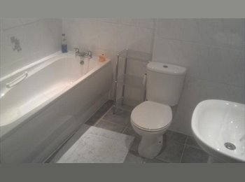 EasyRoommate UK - Very Nice and Large Flat - Great Area - Sefton Park, Liverpool - £450 pcm