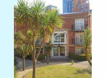 EasyRoommate UK - Gunwharf Quays - Lovely flat - Portsea, Portsmouth - £500 pcm