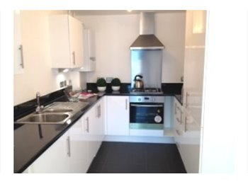 EasyRoommate UK - LARGE DOUBLE room in New build flat 2 min from Ray - Harrow, London - £550 pcm