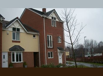 EasyRoommate UK - Professional houseshare near Warrington TownCentre - Great Sankey, Warrington - £368 pcm