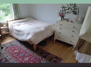 Sunny doubleroom in Seven Sisters