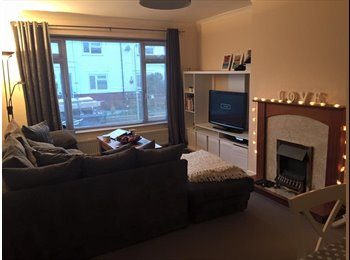 EasyRoommate UK - Prefessional Couple Looking For Flat Mate - Brighton, Brighton and Hove - £500 pcm
