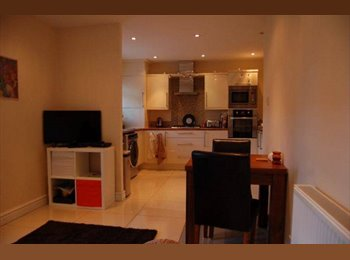 EasyRoommate UK - 2 Rooms to Let in Shared House, Liverpool City - Liverpool, Liverpool - £320 pcm