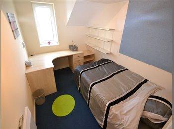 EasyRoommate UK - Students - En-suite bedrooms - £340 bills included - Cathays, Cardiff - £340 pcm