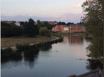 EasyRoommate UK - Professional house share. City centre. River Exe & Cathedral views - Exeter, Exeter - £550 pcm