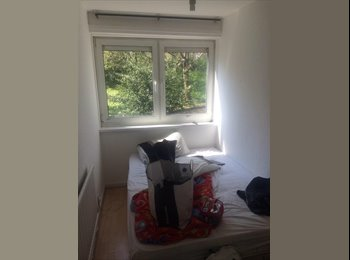 EasyRoommate UK - small cosy double room!  - Archway, London - £460 pcm