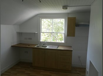 DOUBLE BEDSIT AVAILABLE IN BRIXTON! COUNCIL TAX AN
