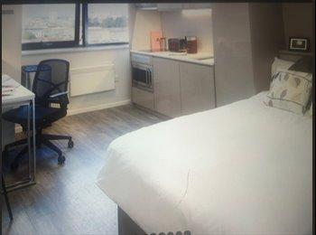 New studio flat for rent