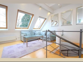 EasyRoommate UK - Apartment for rent Oakthorpe Road, Oxford OX2 - Oxford, Oxford - £700 pcm