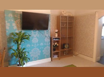 EasyRoommate UK - Superb Flat in Great Location! Very Well Furnished - Fenham, Newcastle upon Tyne - £425 pcm