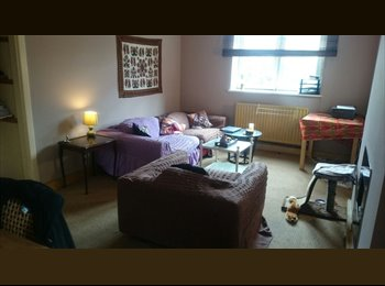 EasyRoommate UK - Two bedrooms for rent in amazing Bermondsey flat! - Bermondsey, London - £600 pcm