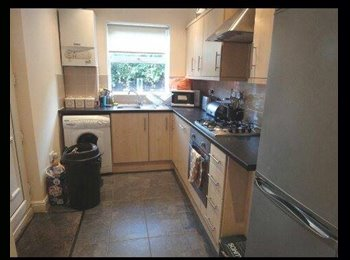 HOUSEMATE WANTED- Sheffield