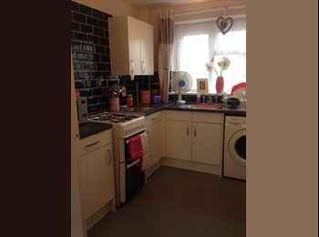 EasyRoommate UK - Double room in clean family home - Old Town, Stevenage - £450 pcm
