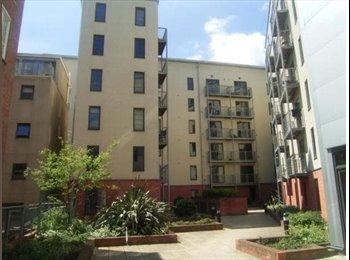 EasyRoommate UK - Room until 19th August-Rent negotiable! - Nottingham, Nottingham - £200 pcm