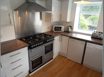 EasyRoommate UK - LOVELY GREAT STUDENT HOMES AT AFFORDABLE PRICES - Mutley, Plymouth - £368 pcm