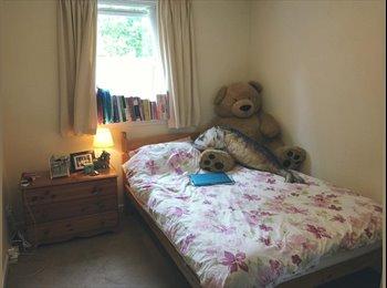 double bedroom 450 pcm near University of Aberdeen