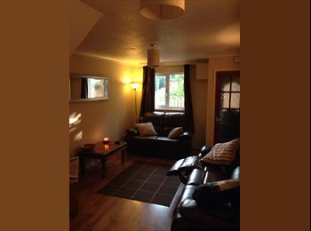EasyRoommate UK - Professional house to share - Exwick, Exeter - £300 pcm