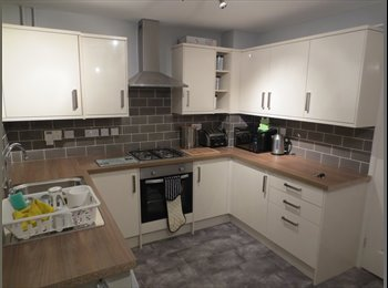 EasyRoommate UK - House Share for Professional Person - Humberstone, Leicester - £350 pcm