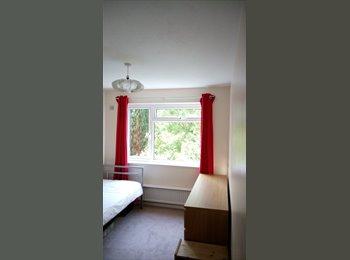 Short Term Large Single Bedroom Close to tranport