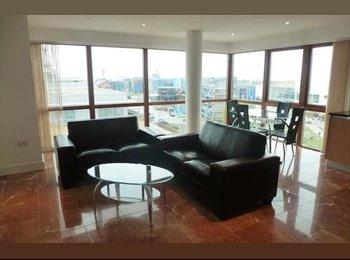 EasyRoommate UK - Top-floor double room in luxury apartment. - Cambridge, Cambridge - £900 pcm