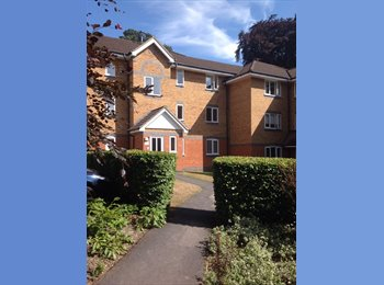 EasyRoommate UK - Double room in two bedroom flat - Crowthorne, Crowthorne - £575 pcm