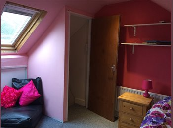 EasyRoommate UK - mr walker - Wrecclesham, Waverley - £480 pcm