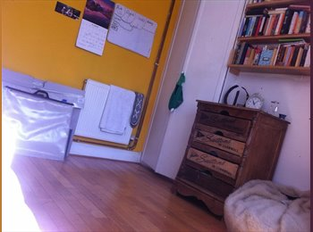 EasyRoommate UK - Single room in family home - Petersfield, East Hampshire and Havant - £500 pcm