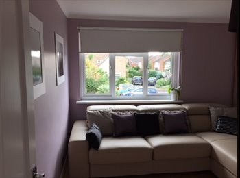 EasyRoommate UK - double room to let with a separate ensuite shower and water tap, Hanworth - £550 pcm