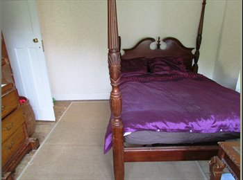 Large Sunny Double Room